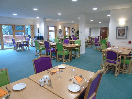 Bright dining area with purple and green chairs