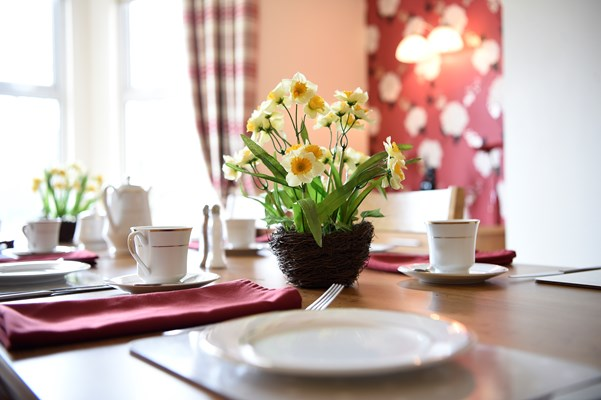 A close up of a table set for dinner with a pot of miniature daffodils in the centre