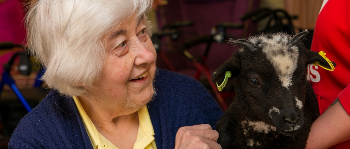 pratt house residents enjoy animal interaction