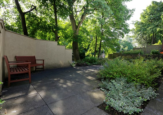 The garden sheltered with trees and two park benches