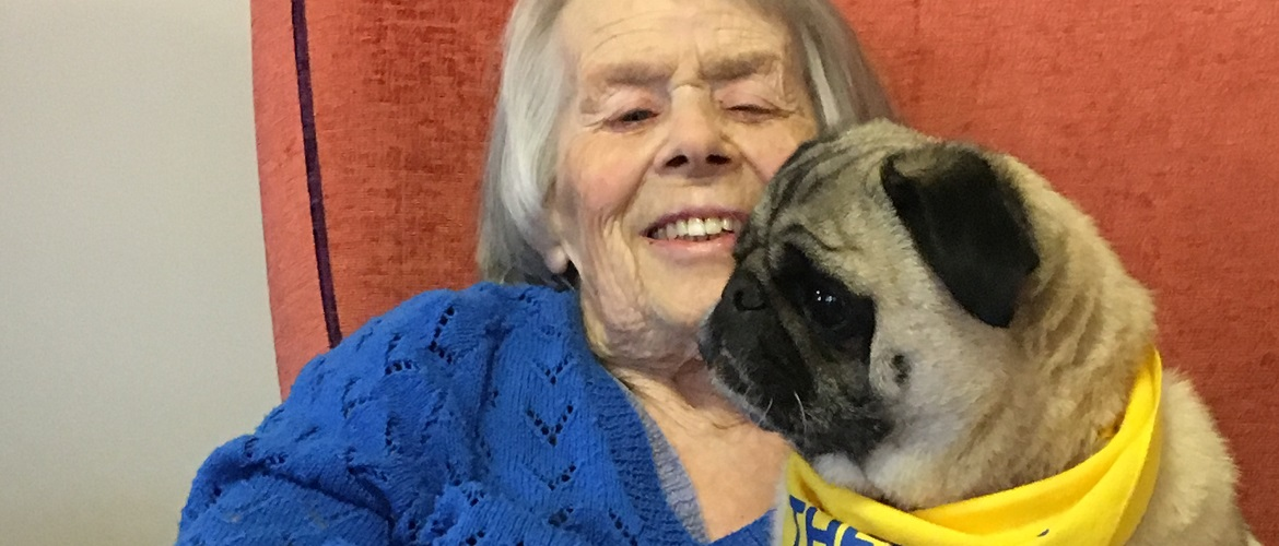animal therapy at care homes