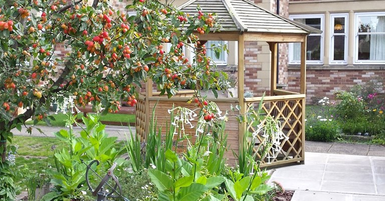 Apple tree and flower bed with a wooden summerhouse