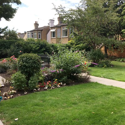 Landscaped garden with flowers in bloom at Rider House